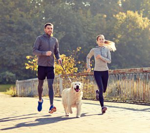 Thumbnail image for Running With Your Dog - How To Keep Your Best Friend Healthy And Happy